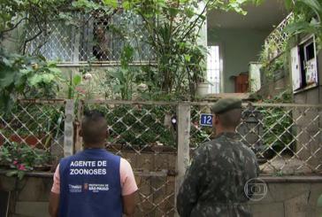 Lei Municipal da Dengue em S. Paulo Padece de Constitucionalidade