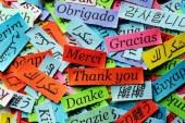 La Ciencia de la Trilogía Analítica aplicada en los idiomas