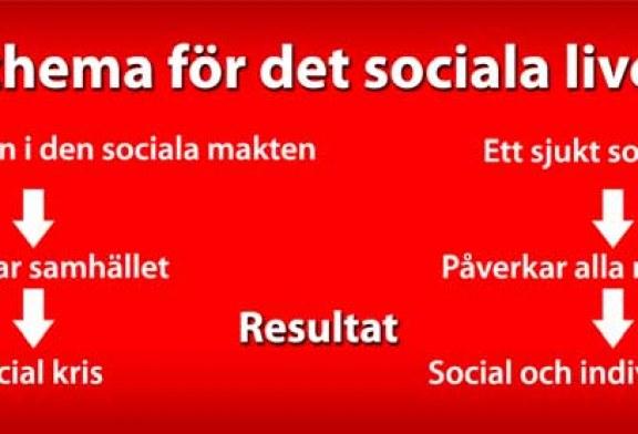 Sociopatologi – Studien om den sociala patologin